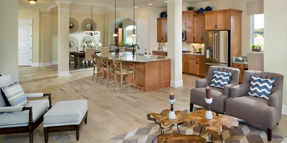 Elegant Single Story Living from David Weekley Homes