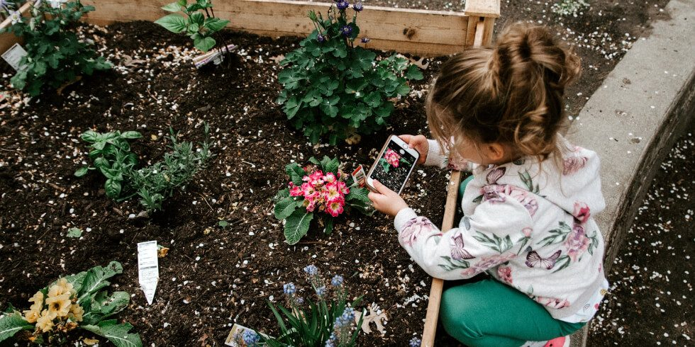 5 Ways to Teach Kids About the Environment